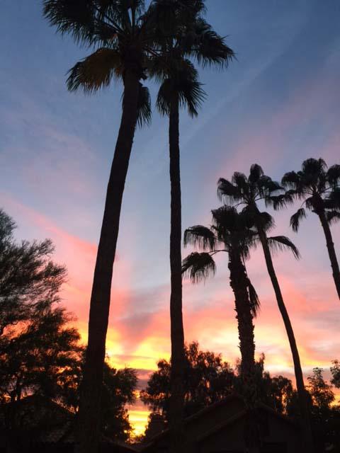 Sun Canyon Sunset in Scottsdale